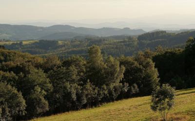 Celles-sur-Durolle (63)