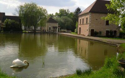 Festigny (89)